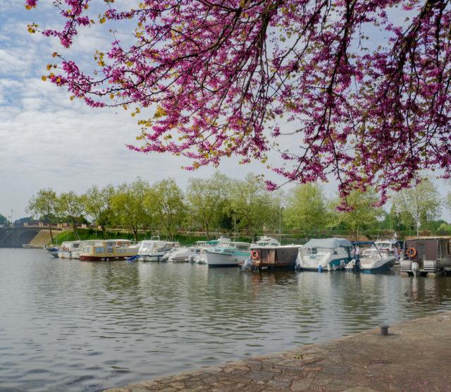 Balade de printemps à Sucé-sur-Erdre