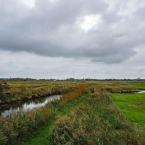 Le Marais de Brière