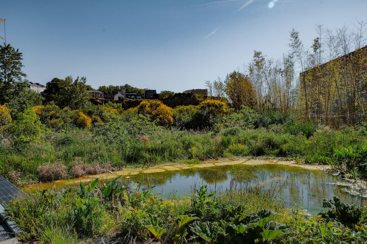 Le Jardin Extraordinaire - Nantes