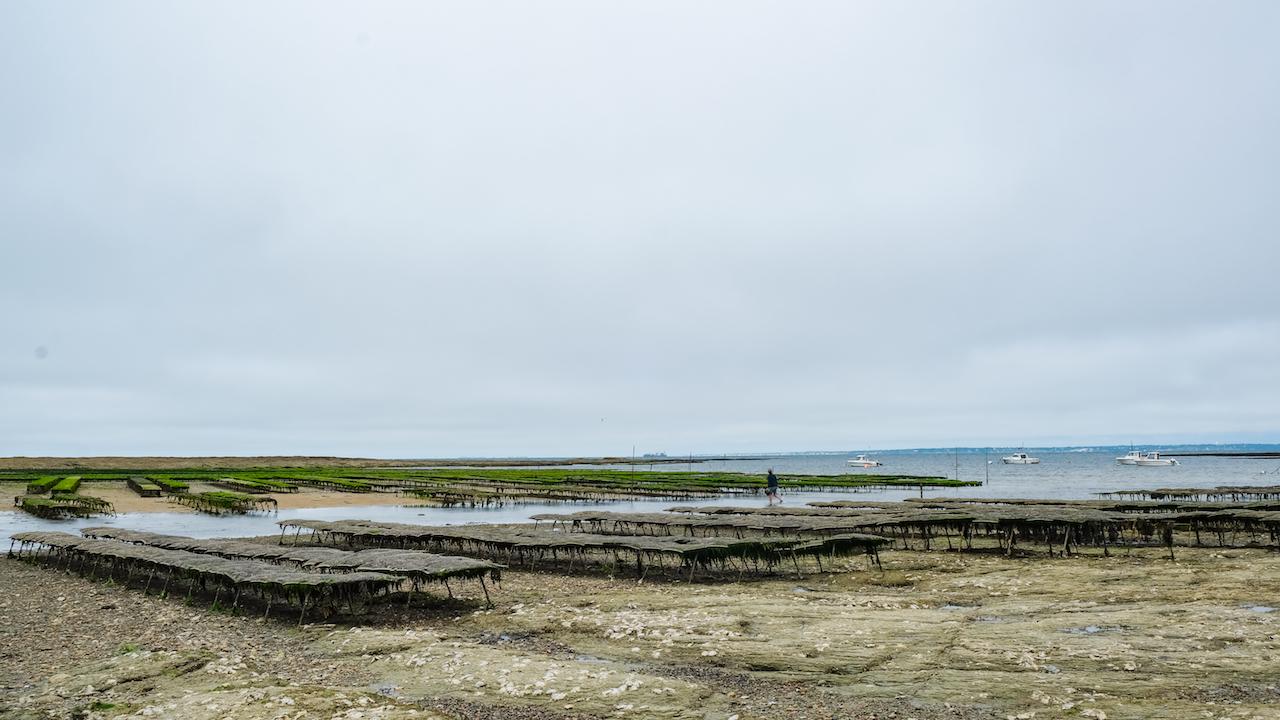 La Plaine sur Mer