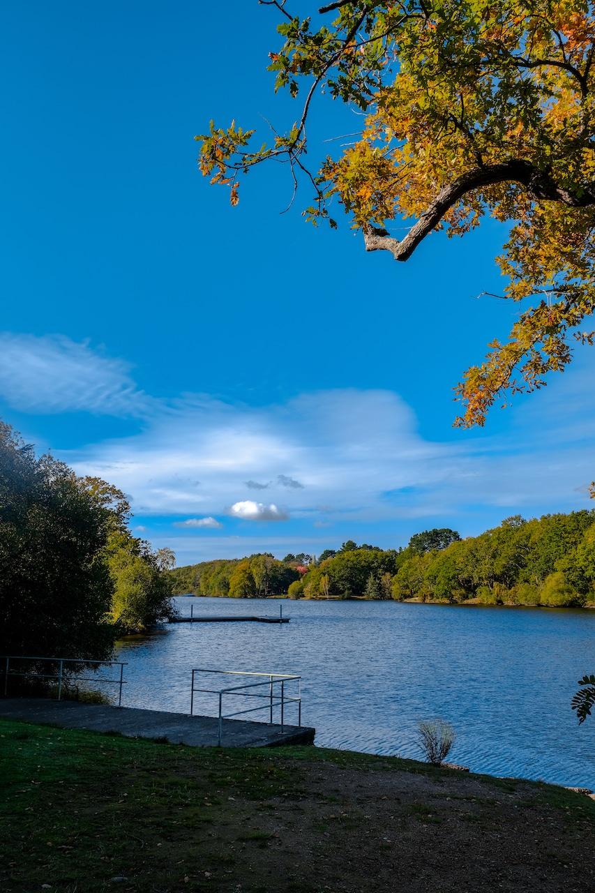 Lac de Savenay