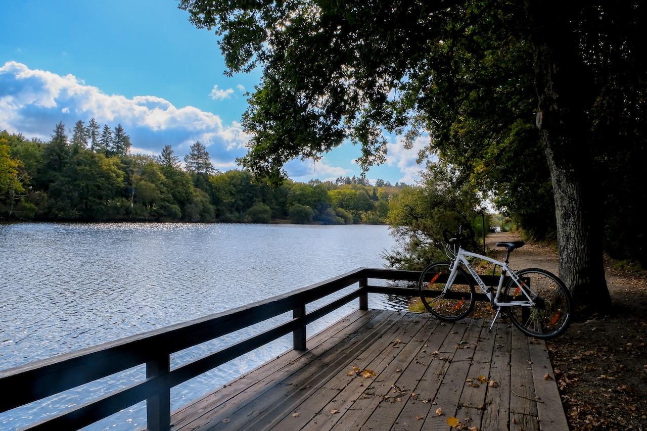 Vélo Lac de Savenay
