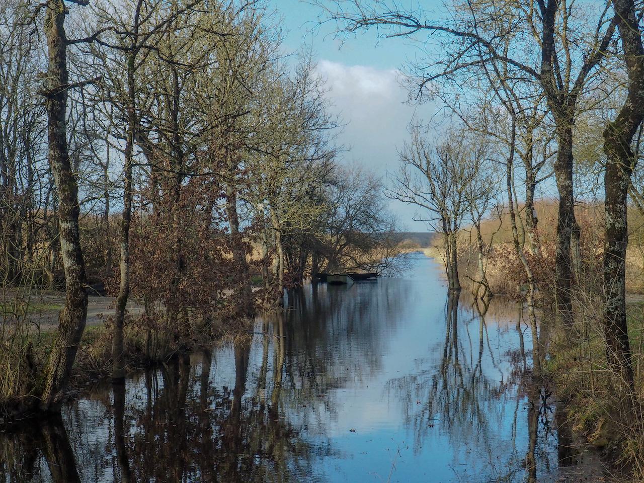 Balade Marais de Goulaine
