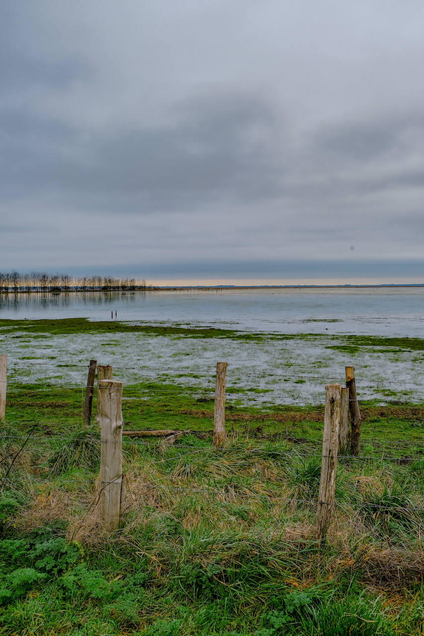 Balade Loire Atlantique Marais de Brière